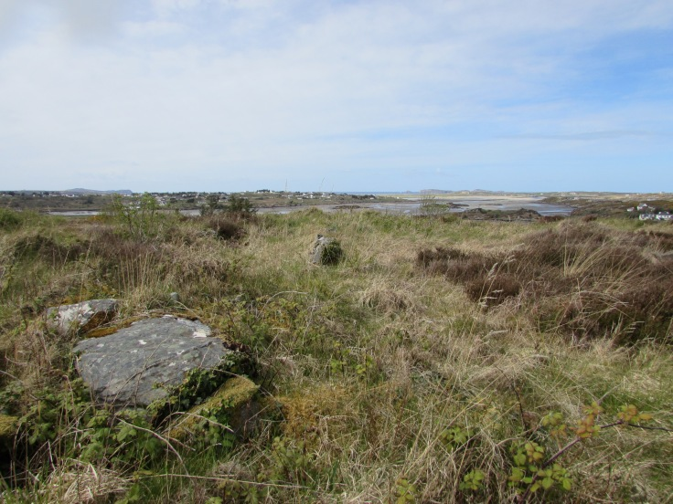 Panoramic view from the centre of Caiseal Anagaire looking north.