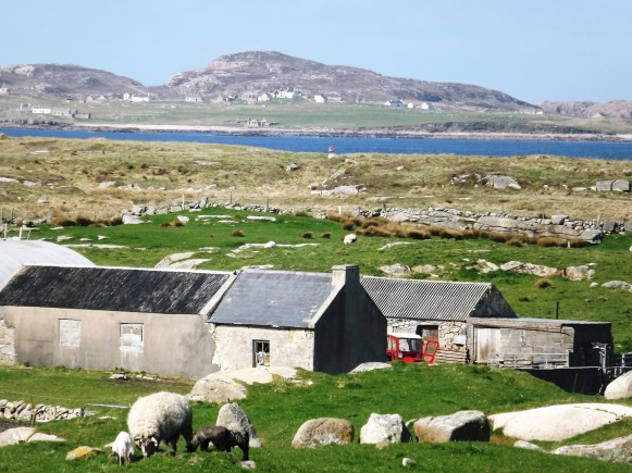 April 2012 ...A Carrickfin Farm with Gola Island in the background